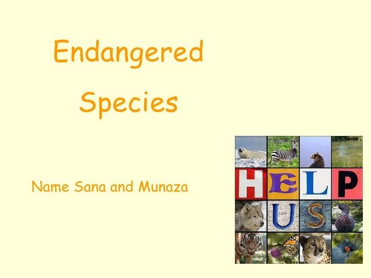 Endangered Species Name Sana and Munaza