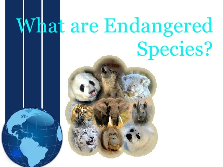 What are Endangered             Species?                    Sub Title