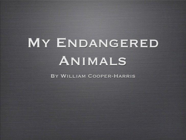 My Endangered   Animals  By William Cooper-Harris