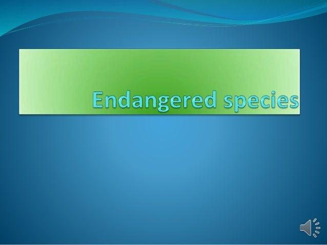 INDEX  Endangered Species  Endangered Animals  Endangered Birds
