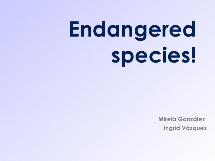 Endangered species! Mireia González  Ingrid Vázquez