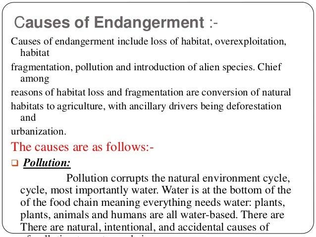 Endangered Species - M...
