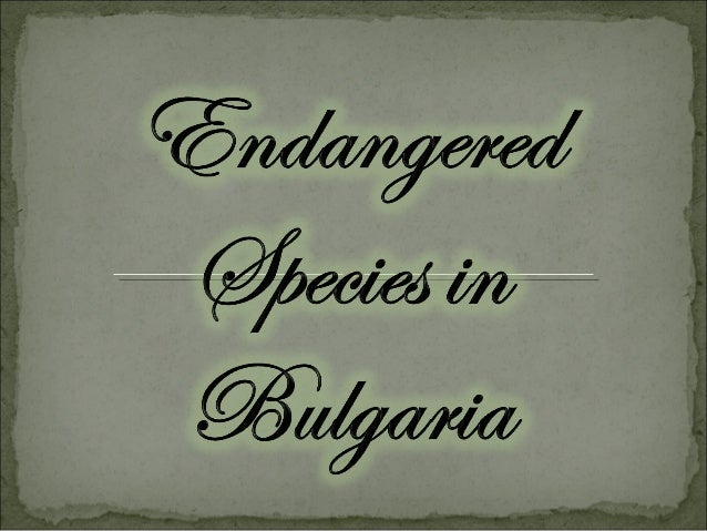 B ulgaria is one of the first in E urope in a variety of anim al species. Necessary habitats for the existence of m any of...