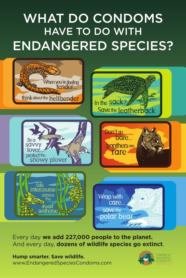 endangered species condoms poster