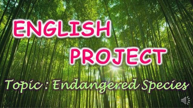 Endangered Species Power Point Presentation