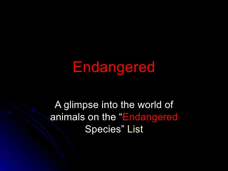 "Endangered A glimpse into the world of animals on the "" Endangered  Species""  List"