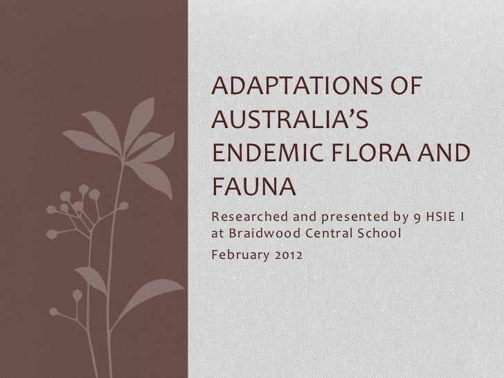 ADAPTATIONS OFAUSTRALIA'SENDEMIC FLORA ANDFAUNAResearched and presented by 9 HSIE Iat Braidwood Central SchoolFebruary 2012