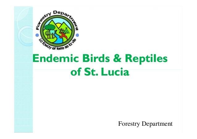 Endemic Birds &Endemic Birds & ReptilesReptiles of St. Luciaof St. Luciaof St. Luciaof St. Lucia Forestry Department
