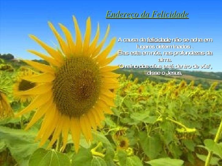 Endereço da Felicidade A causa da  felicidade  não se acha em lugares determinados . Elas esta em nós, nas profundezas da ...