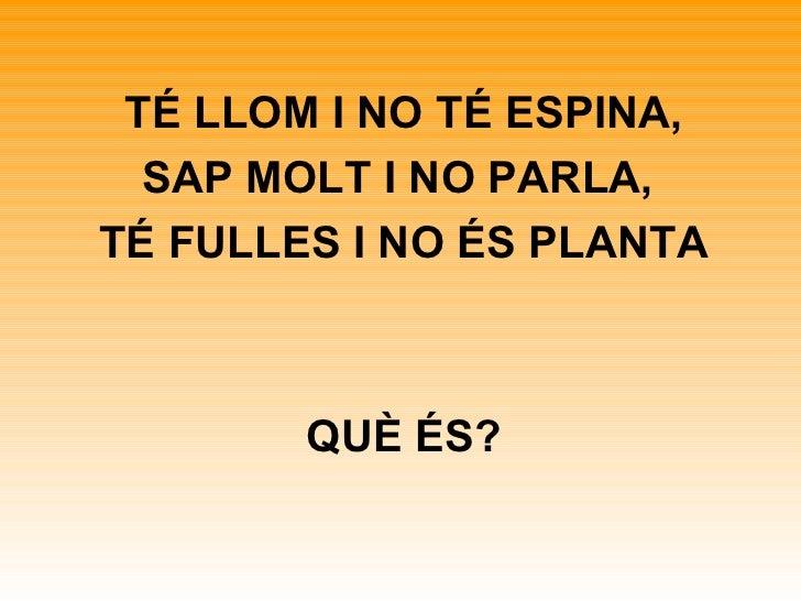 TÉ LLOM I NO TÉ ESPINA, SAP MOLT I NO PARLA,  TÉ FULLES I NO ÉS PLANTA QUÈ ÉS?