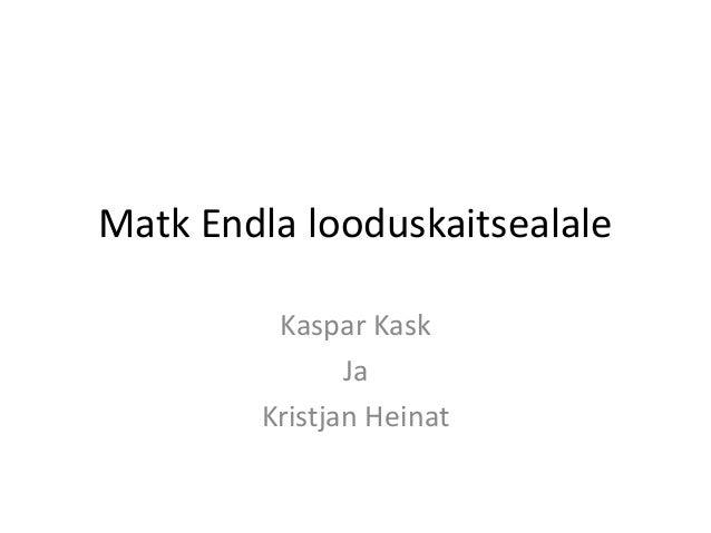 Matk Endla looduskaitsealale Kaspar Kask Ja Kristjan Heinat
