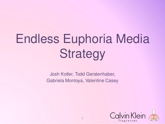 Endless Euphoria Media Strategy Josh Kotler, Todd Gerstenhaber, Gabriela Montoya, Valentine Casey 1
