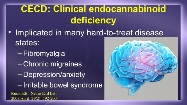 Image result for endocannabinoid system homoeostasis