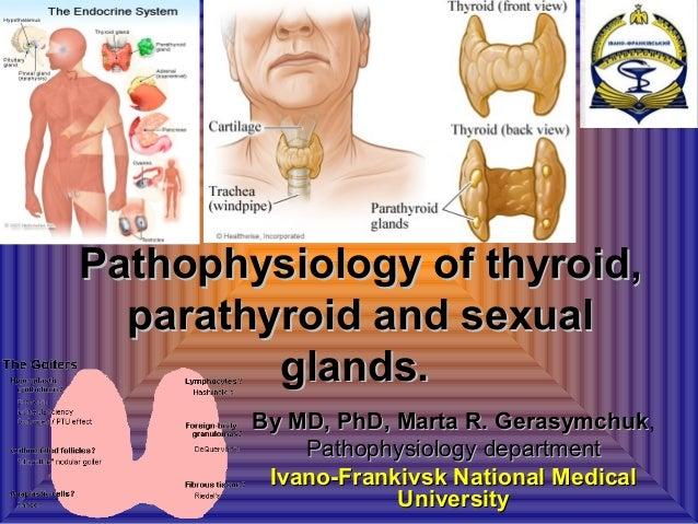 Pathophysiology of thyroid,Pathophysiology of thyroid,parathyroid and sexualparathyroid and sexualglands.glands.By MD, PhD...