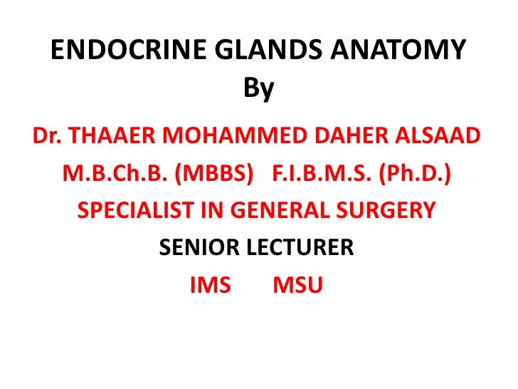 ENDOCRINE GLANDS ANATOMY              By Dr. THAAER MOHAMMED DAHER ALSAAD    M.B.Ch.B. (MBBS) F.I.B.M.S. (Ph.D.)      SPEC...