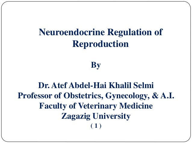 Neuroendocrine Regulation of Reproduction By Dr. Atef Abdel-Hai Khalil Selmi Professor of Obstetrics, Gynecology, & A.I. F...