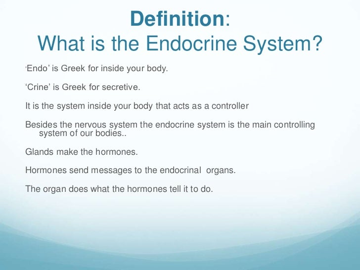 endocrine system, Human Body