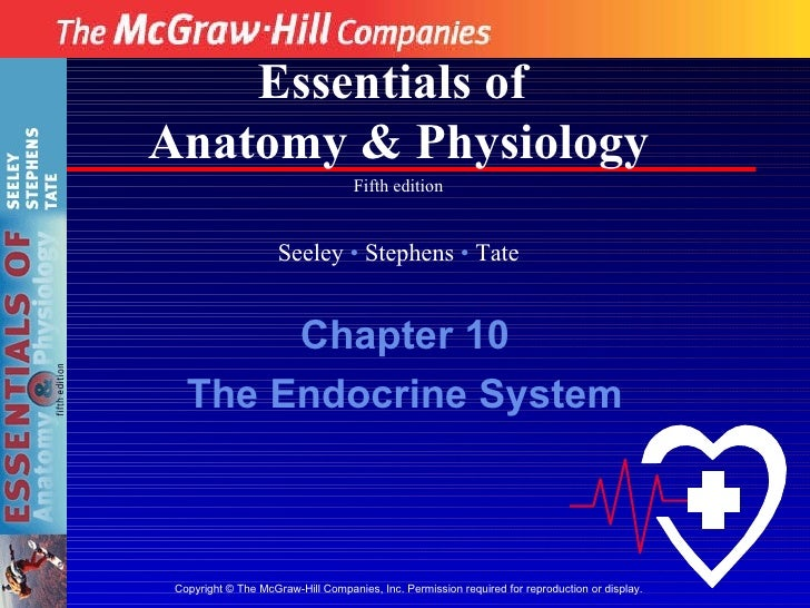 Copyright  ©  The McGraw-Hill Companies, Inc. Permission required for reproduction or display. Essentials of  Anatomy & Ph...