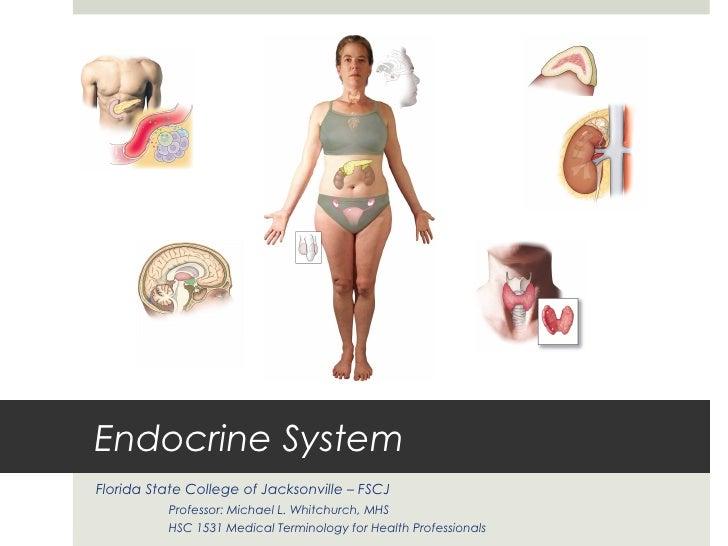 Endocrine SystemFlorida State College of Jacksonville – FSCJ          Professor: Michael L. Whitchurch, MHS          HSC 1...