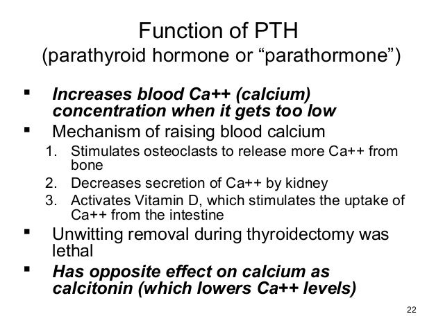 function of the parathyroid Abstract a study of south african bantu infants with vitamin d deficiency rickets  revealed marked elevation of the phosphorus excretion index (pei) as measured .