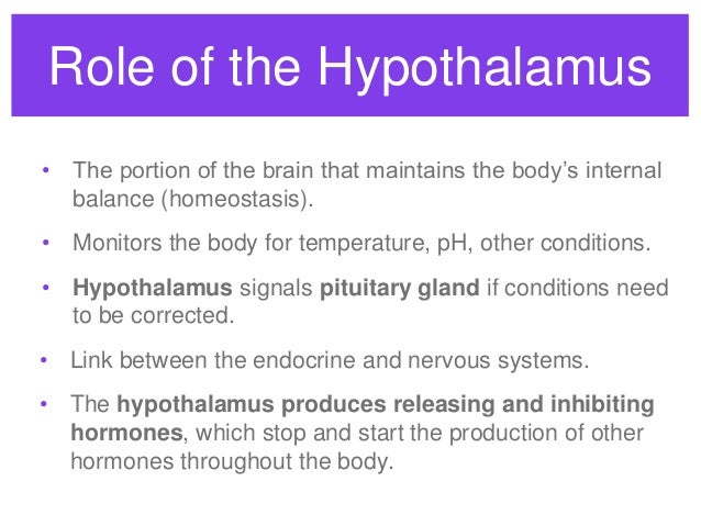 Endocrine system overview - HS Anatomy and Physiology