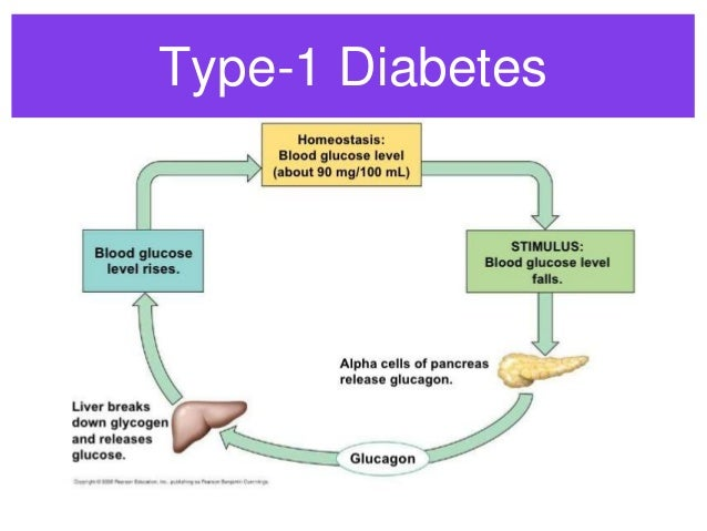 disease of the endocrine system diabetes essay Free essay on the endocrine system available totally free at echeatcom, the largest free essay community.