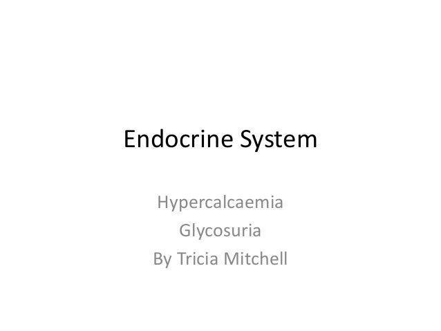 Endocrine System Hypercalcaemia Glycosuria By Tricia Mitchell
