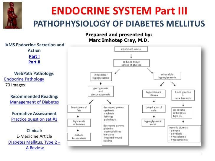 ENDOCRINE SYSTEM Part III              PATHOPHYSIOLOGY OF DIABETES MELLITUS                               Prepared and pre...