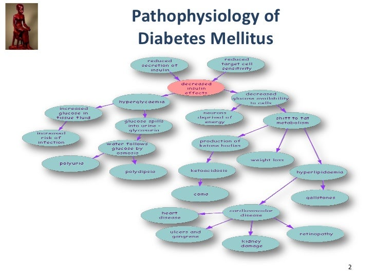 pathophysiology of diabetes mellitus pdf