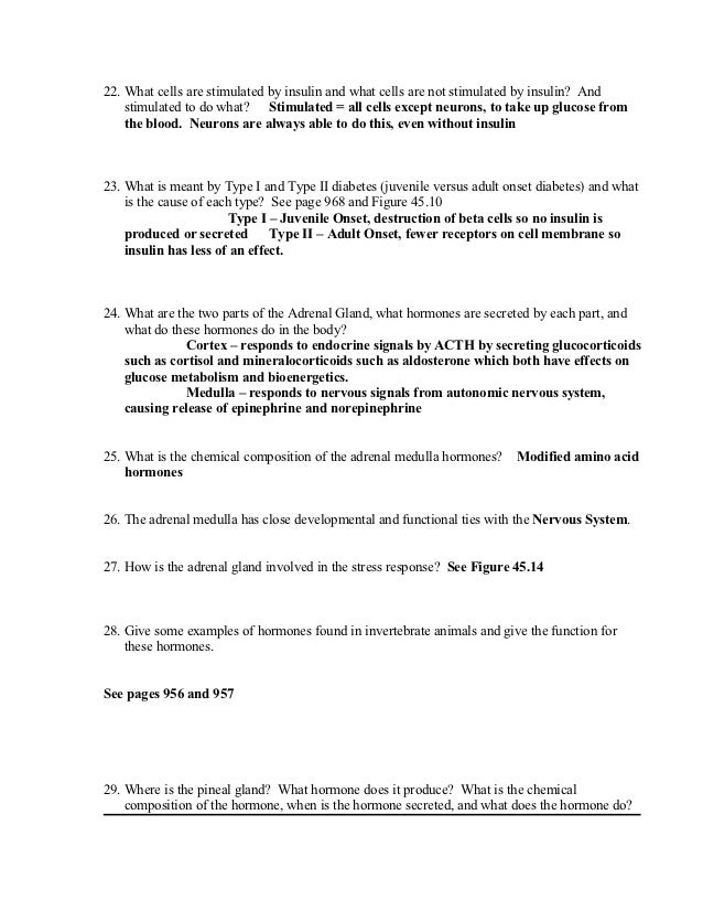 Endocrine system worksheet key – The Endocrine System Worksheet