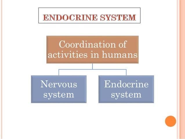 Chemical Coordination and Integration: Endocrine System Slide 2