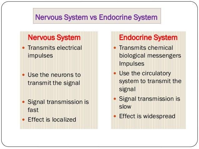 Chemical Coordination and Integration: Endocrine System Slide 3
