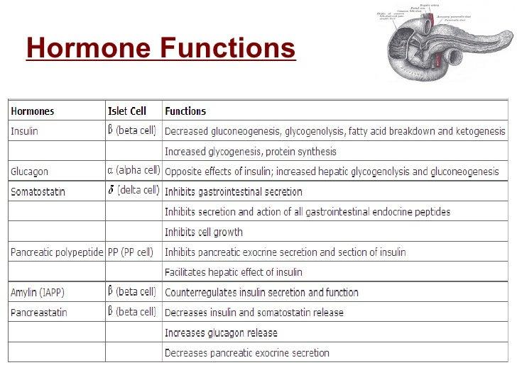 Endocrine Tumors Of The Pancreas