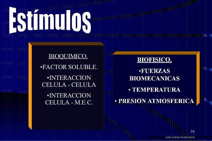 <ul><li>BIOQUIMICO.   </li></ul><ul><li>FACTOR SOLUBLE. </li></ul><ul><li>INTERACCION CELULA - CELULA </li></ul><ul><li>IN...