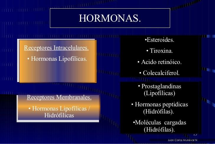 HORMONAS. <ul><li>Receptores Intracelulares.   </li></ul><ul><li>Hormonas Lipofílicas. </li></ul><ul><li>Receptores Membra...