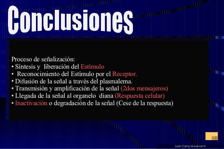 <ul><li>Proceso de señalización: </li></ul><ul><li>Síntesis y  liberación del  Estímulo </li></ul><ul><li>Reconocimiento d...