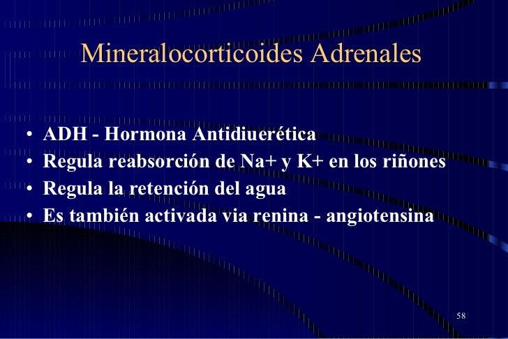 Mineralocorticoides Adrenales <ul><li>ADH - Hormona Antidiuerética  </li></ul><ul><li>Regula reabsorción de Na+ y K+ en lo...