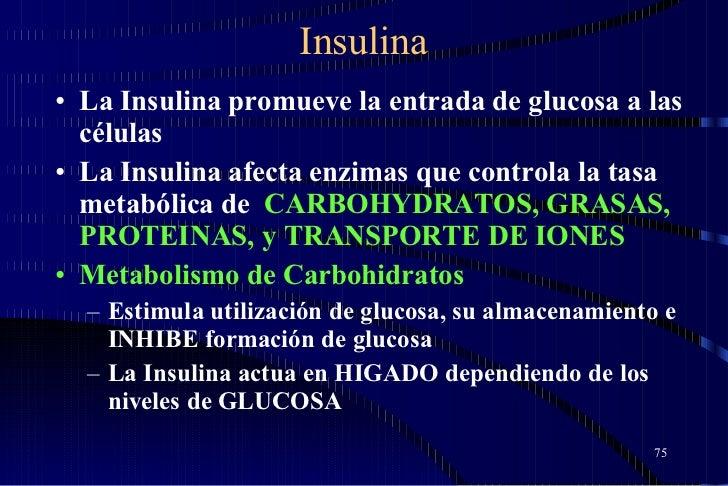 Insulina <ul><li>La Insulina promueve la entrada de glucosa a las células </li></ul><ul><li>La Insulina afecta enzimas que...