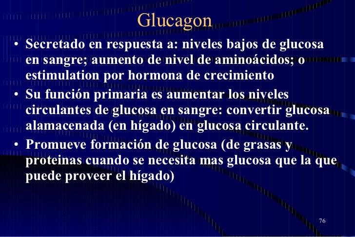 Glucagon <ul><li>Secretado en respuesta a: niveles bajos de glucosa en sangre; aumento de nivel de aminoácidos; o estimula...