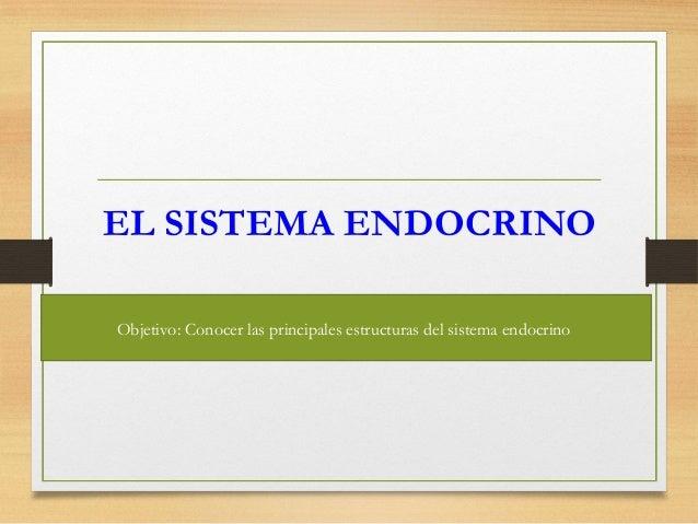 EL SISTEMA ENDOCRINO Objetivo: Conocer las principales estructuras del sistema endocrino