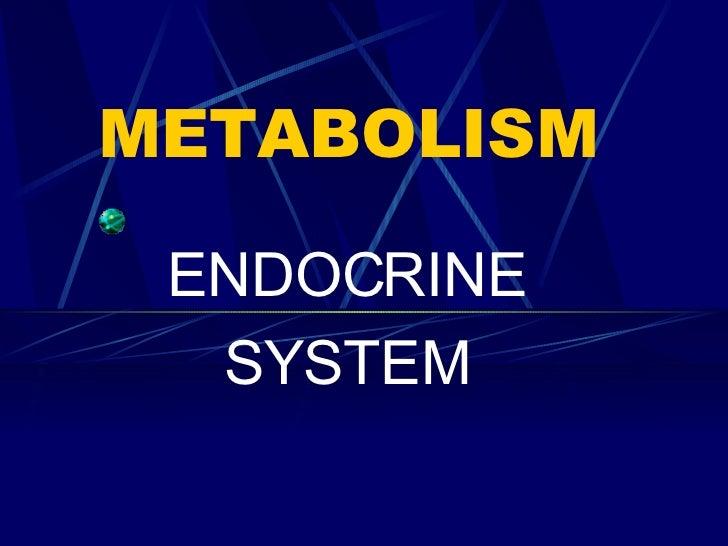 METABOLISM ENDOCRINE SYSTEM