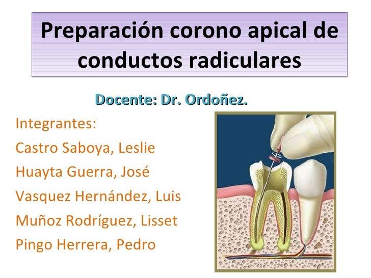 Preparación corono apical de conductos radiculares Docente: Dr. Ordoñez. Integrantes:  Castro Saboya, Leslie Huayta Guerra...