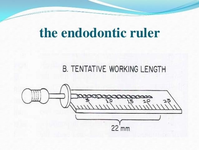 the endodontic ruler