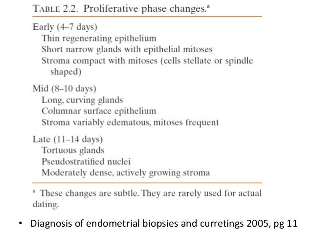 Dating the endometrial biopsy