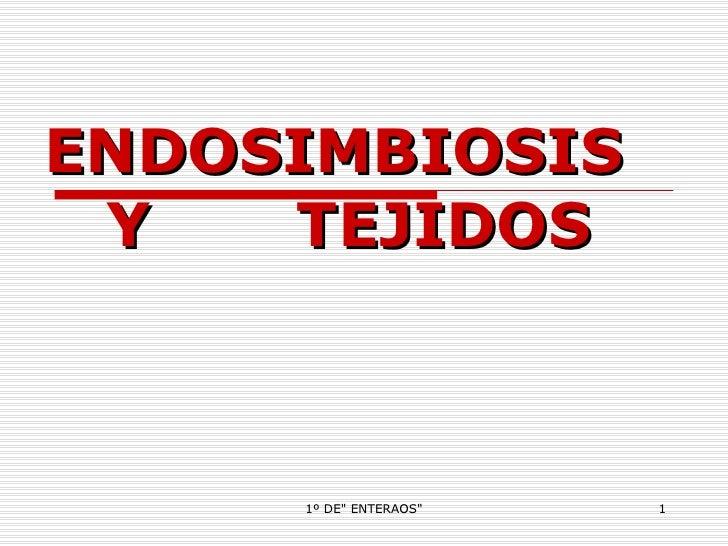 ENDOSIMBIOSIS  Y  TEJIDOS