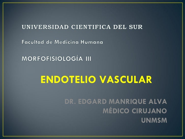 ENDOTELIO VASCULAR DR. EDGARD MANRIQUE ALVA MÉDICO CIRUJANO UNMSM