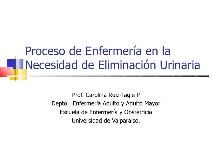 Proceso de Enfermería en la Necesidad de Eliminación Urinaria  Prof. Carolina Ruiz-Tagle P Depto . Enfermería Adulto y Adu...