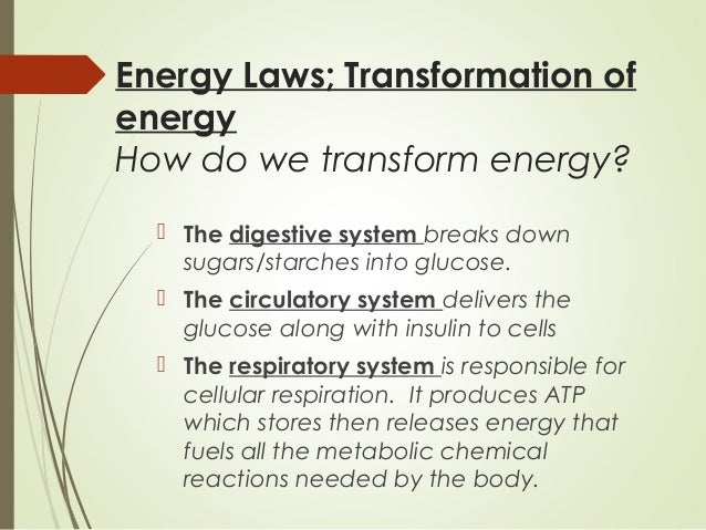 Anatomy & Physiology - Body Systems