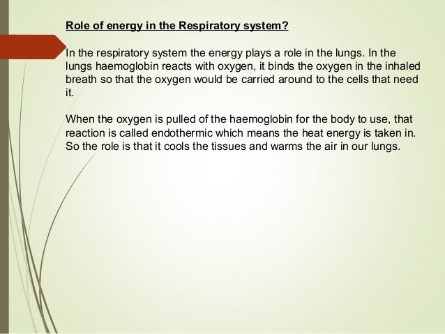 explain how the respiratory and circulatory The respiratory system is vital to every human being they are units of respiration and the site of gas exchange between the respiratory and circulatory systems.