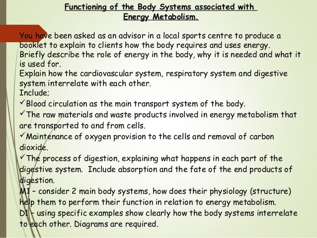 analyse how two body systems interrelate to perform a named function functions Get access to d1 analyse how two body systems interrelate to perform a named functions essays only from anti essays listed results 1 - 30 get studying.
